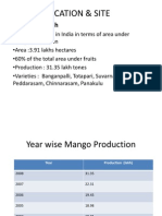 Mango Processing - Andhra Pradesh