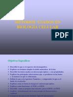 Clase 10a-Biologia Celular Metodos NUTRICION 2014