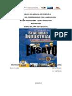 Ensayo Seguridad Industrial EJEMPLO