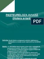 118421628-PASTEURELOZA-AVIARA