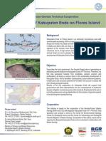 indonesien_riskmapping_floresisland