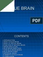 Blue Brain2