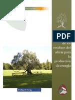 El Mercado de Los Residuos Del Olivar Para La Produccion de Energia