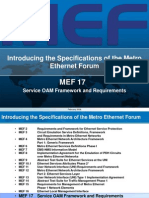 Overview of MEF17