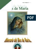 Itinerario del Mes de María 2009 Enseñanza Media