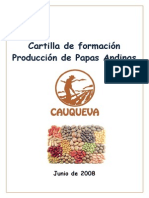 Cartilla Producción de Papas Andinas