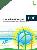 Erneuerbare Energie in Zahlen 2010_web