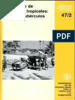 Uitlización de Alimentos Tropicales. Raíces y Tubérculos.