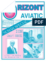 orizont_aviatic_19