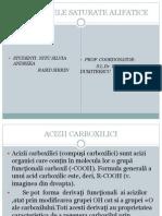 Anhidridelele Saturate Alifatice-rasid Sirrin,Nitu Silvia-gr9 (1)