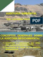 Auditoría Ambiental. Documentos de Trabajo