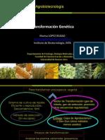 Clase Transformacion -AGBT2013- VF.pdf