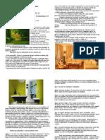 Culorile În Designul de Interior