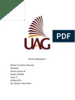Revision Bibliografica 1