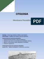 1 Ano - Citologia