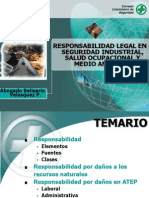 13 Responsabilidad Legal en Seguridad Industrial SaludOcupacional