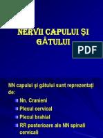 n CAP GAT