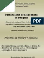 98 Slides Parasito