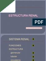 RENAL 1-B