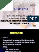 Efloresensi Dr Citra