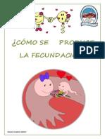 El Proceso de La Fecundación y El Embarazo