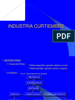 I4 -CURTIDURIA
