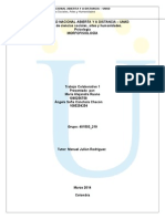COLABORATIVO_morfo_401503_219.doc