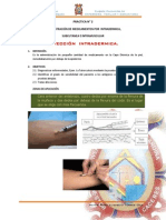 Intradermica, Subcutanea e Intramuscular
