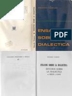Vasquez, Eduardo - Ensayos Sobre La Dialectica