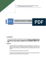 2.1 Estudio de Impacto Ambiental