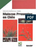 Espinoza Neira Nelson - Malezas Presentes en Chile
