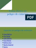 Fauna ibérica en peligro de extinción.pptx