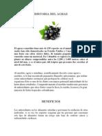Historia Del Agraz- Arandano