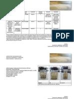 Segunda Semana Aguas Superficies y Ambientes. Coliformes, Rodac, Sedimentación.