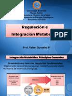 Tema 11, Reg e Integrac Metab Completo