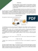 Conceptos introductorias a la gasificación.pdf