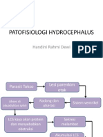 PATOFISIOLOGI HYDROCEPHALUS