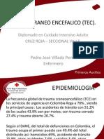 Traumacraneo Encefalico (Tec)