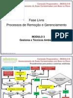 Fase Livre  - Processos de Remoção e Gerenciamento.pdf
