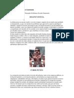 Problemas Sociales en Guatemala.docx