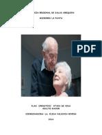 Plan Operativo Anual Del Adulto Mayor 2014