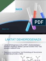 LAKTAT DEHIDROGENAZA
