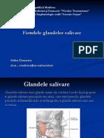 Prelegere 5 Fistulele Glandelor Salivare