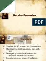 20924122-NerviosCranealesRev