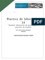 Practica 14