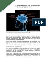 Base Biológica Para Los Desórdenes de Procesamiento Sensorial (Dps) en Los Niños