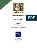 Raul Brandao Avejao