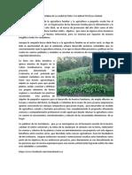 Año Internacional de La Agricultura y Su Impacto en La Ciudad