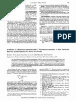 5-HT (Serotonin) Oxidation overview