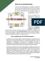 Concepto de La Microeconomia